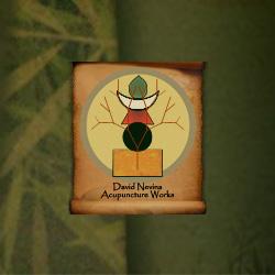 David Nevins logo