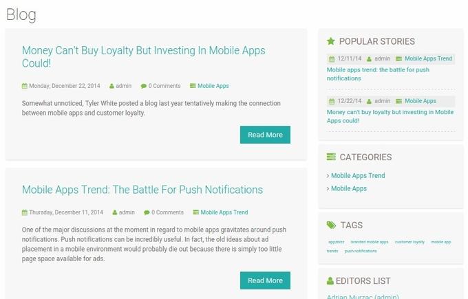 Blog page design on Appzbizz.com